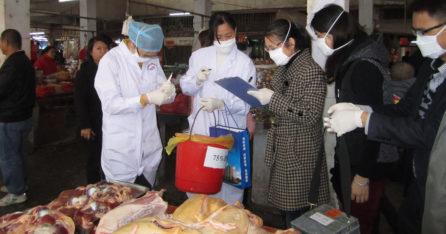 Realizing Global Health